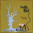 Album Cover: Branches Untangle, Wallis Bird
