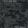 Album Cover: Deep Coal Grey, Riot Of Colours