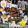 Album Cover: Moodsets, Wallis Bird